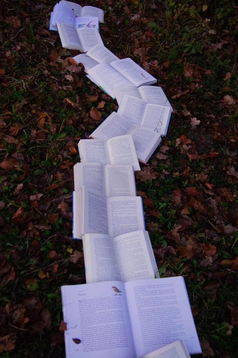 Trail of open books